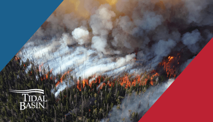 7 - The Top Ten Disasters of 2020 - #2 California's Historic Wildfire Season Thumbnail