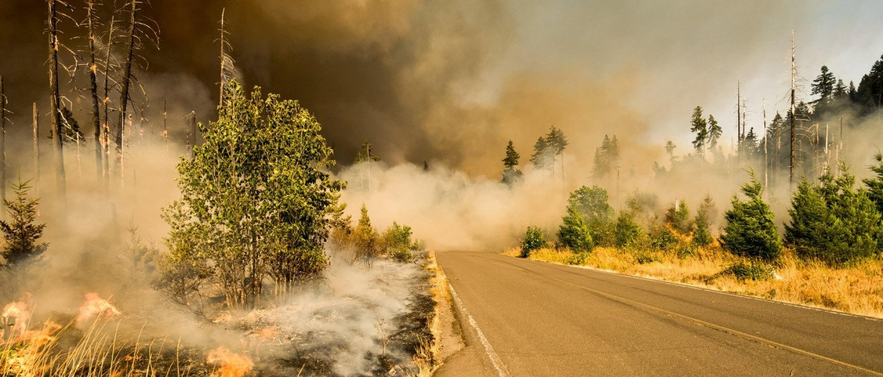 Carlos Castillo Shares Importance of Wildfire Preparedness and highlights FEMA's Fire Mitigation Assistance Grants Thumbnail Image